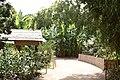 Bambouseraie de Prafrance 20100904 029.jpg