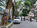 Bangalore Sanjay nagar street trees 10.jpg
