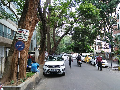 Bangalore Sanjay nagar street trees 10