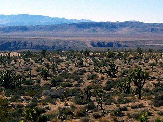 Beaver Dam Wash wadi in Washington County, Utah; Mohave County, Arizona; and Lincoln County, Nevada in the United States