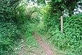 Beginning of bridleway, Kellaton - geograph.org.uk - 826234.jpg