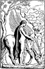 Pegaso Cavallo Alato Disegno.Pegaso Mitologia Wikipedia