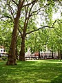 Berkeley Square, City of Westminster, W1 (2571502942).jpg