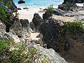 Bermuda (UK) image number 234 foliage sand ocean.jpg
