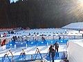 Biathlon World Cup 2019 - Le Grand Bornand - 13.jpg