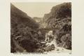 Bild från familjen von Hallwyls resa genom Algeriet och Tunisien, 1889-1890 - Hallwylska museet - 92053.tif