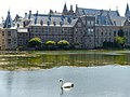 Binnenhof swan,The Hague (9232200740).jpg