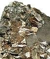 Bismuth-202122.jpg