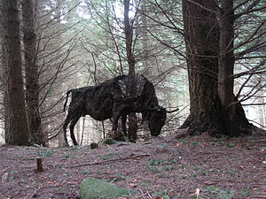 Green spaces and walkways in Aberdeen - Sculpture of European Bison by Sally Matthews, Tyrebagger sculpture park