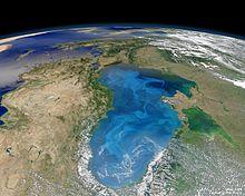 Черное море википедия доклад 3502