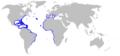 Blackfin Sorcerer Eel Distribution Map.png