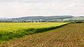 Blomberg - 2015-05-29 - LSG-4019-0036 (3).jpg