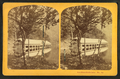 Boat House, Profile Lake, from Robert N. Dennis collection of stereoscopic views 7.png
