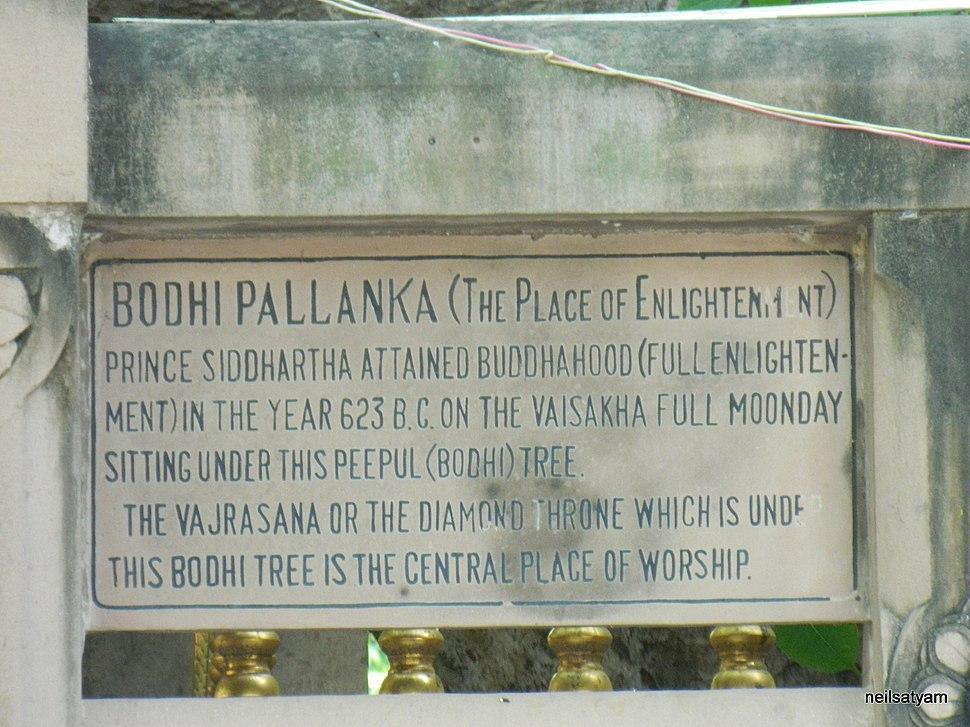 Bodhi Tree Marking - panoramio