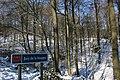 Bois du Pottelberg - Pottelbergbos 22.jpg