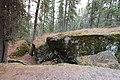 Bonsai Boulders Kananaskis Alberta Canada (16672959839).jpg