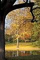 Bordeaux parc bordelais 02.jpg