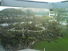 Bosque central itesm cva.JPG