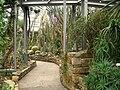 Botanischer Garten, Berlin-Dahlem - view - IMG 8771.JPG