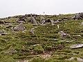 Boulder field - geograph.org.uk - 219289.jpg