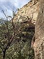 Boynton Canyon Trail, Sedona, Arizona - panoramio (70).jpg