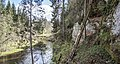 Brasla-Virtakas ieža apkārtne - panoramio (3).jpg