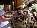 Brevard Zoo African Animals - Flickr - Rusty Clark (20).jpg