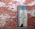 Bricks,Door and Cat by Carroll Jones III.jpg