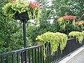 Bridge in Leighton Buzzard.jpg