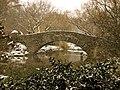 Bridge over the Pond, Central Park, NYC.jpg