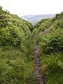 Bridleway From Steeple Cross - geograph.org.uk - 862613.jpg