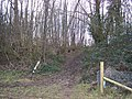 Bridleway through Rabbit Wood - geograph.org.uk - 1149981.jpg