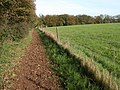 Bridleway to Hazel Wood - geograph.org.uk - 269661.jpg
