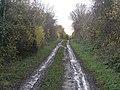 Bridleway towards Mapperley - geograph.org.uk - 1167856.jpg