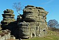 Brimham rocks from Flickr (A) 05.jpg