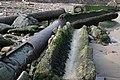 Broken Victorian Sewage Pipe - geograph.org.uk - 377673.jpg