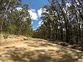 Brooman NSW 2538, Australia - panoramio (129).jpg