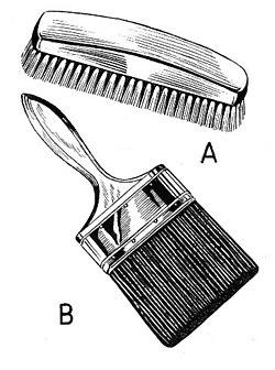 brush - Wiktionary