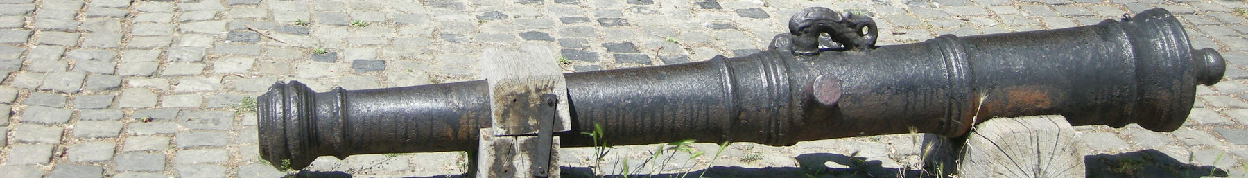 Buda banner Long cannon.jpg