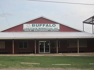 Buffalo, Texas City in Texas, United States