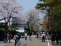 Bukeyashiki Street in Kakunodate 20180428b.jpg