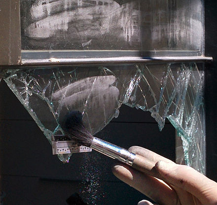Fingerprint dusting of a burglary scene BurglaryIsrael2.jpg