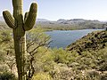 Butcher Jones Trail - Mt. Pinter Loop Trail, Saguaro Lake - panoramio (153).jpg