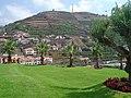 Câmara de Lobos - Portugal (241426381).jpg