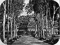 COLLECTIE TROPENMUSEUM Borobudur TMnr 60005251.jpg