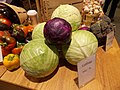 Cabbage 60c Lb (126311597).jpeg