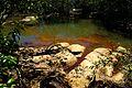Cachoeira do Salto Liso (3759538434).jpg