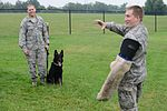 Cadets visit 22nd Security Forces Squadron kennel 150708-F-XK483-070.jpg
