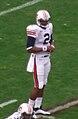 Cam Newton (crop) 2010-11-16.jpg