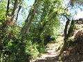 Camino de Atalbéitar (9774991806).jpg